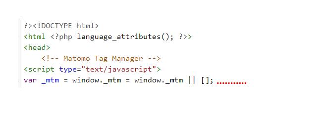 Matomo tag manager code in Quellcode eingefügt